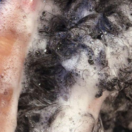 Curl Hydrating Shampoo