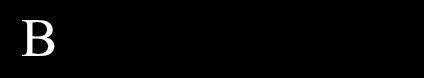 Bye Bye Parabens Logo